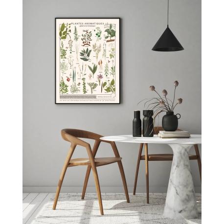 Affiche Plantes aromatiques par les Jolies Planches